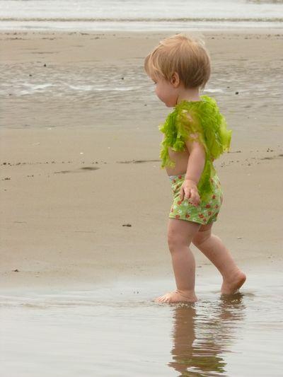 Seaweed baby