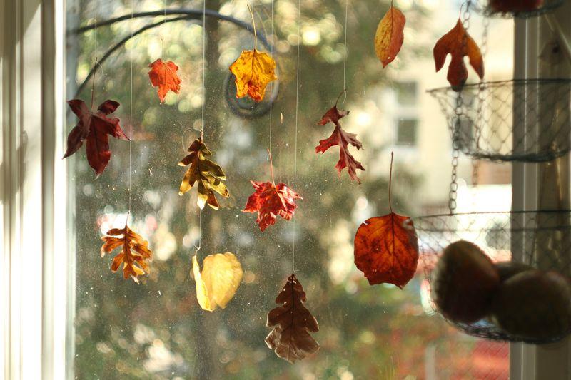 Leaves01
